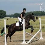 Eine Reiterin springt mit Pferd über einen Kreuzsprung.