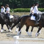 Vier Reiter der Dressurquadrille reiten voneinander weg.