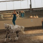 Eine Frau steht auf einem galoppierenden Pferd.