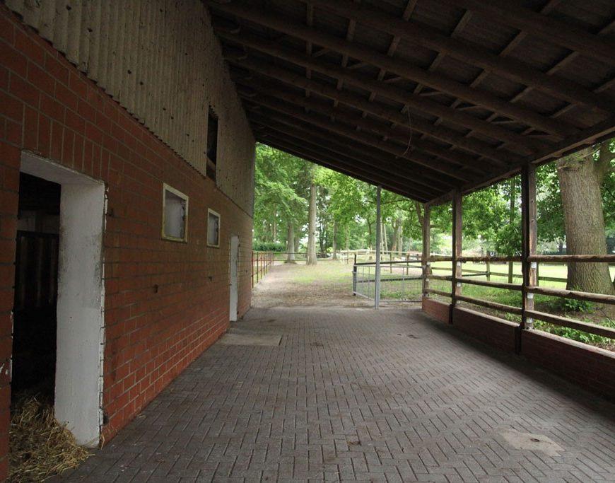 Ein großer überdachter und gepflasterter Bereich an einem Stallgebäude.